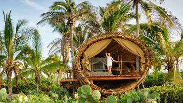 This Treehouse Sure Looks Like A Good Place To Stay On Your Mexico Trip